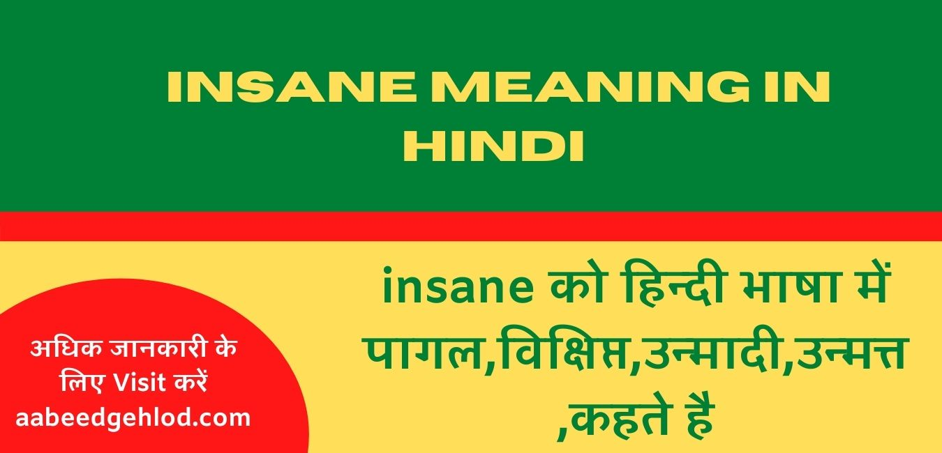 Insane meaning in hindi