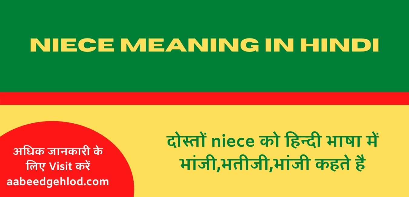 Niece meaning in hindi