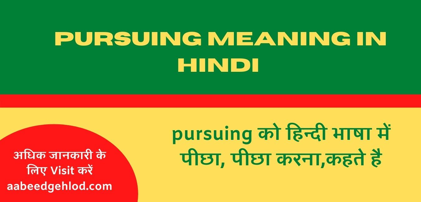Pursuing meaning in hindi